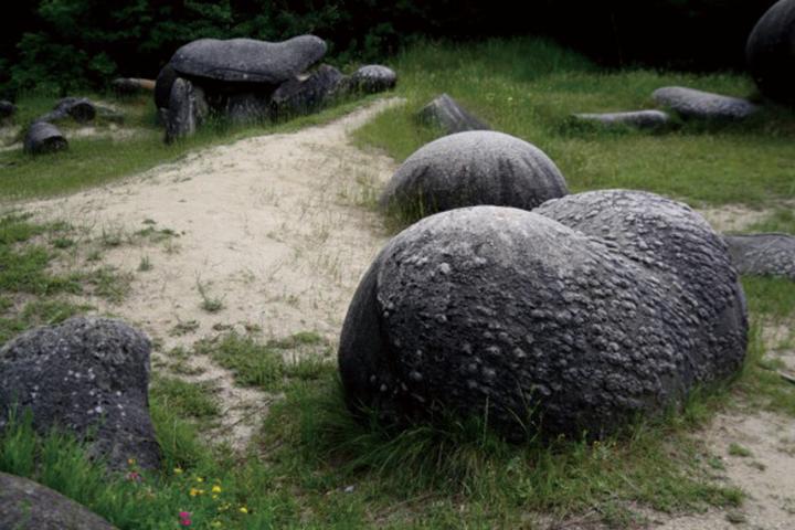 石や壁など、無生物が動いたり、話したりする夢